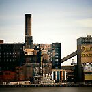 Sugar Factory - Brooklyn - New York City by Vivienne Gucwa