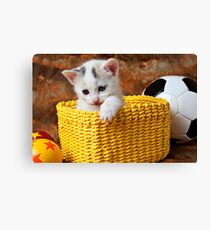 Kitten in yellow basket Canvas Print