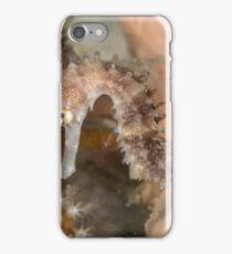Thorny Seahorse iPhone Case/Skin