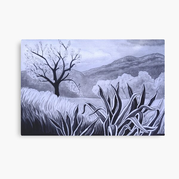 Agave (Pita) and blossoming Almond Tree in Ibiza   Canvas Print