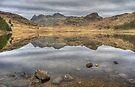 Blea Tarn-Rocks & Reflections by Jamie  Green