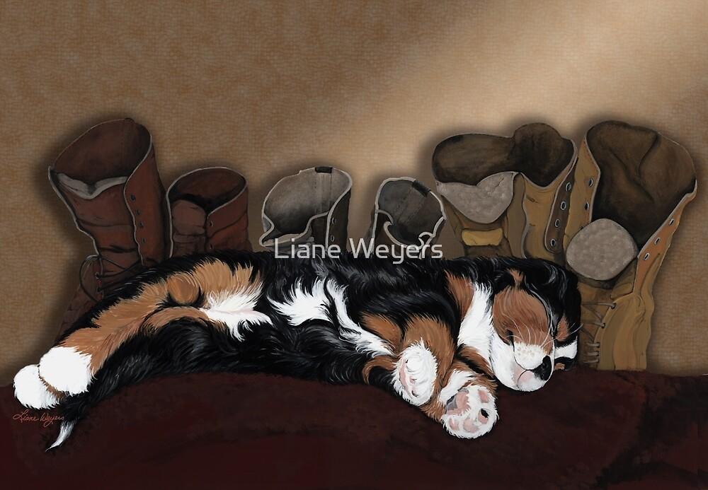 Hush Puppy by Liane Weyers