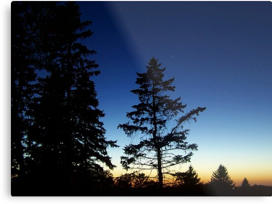 Star Light, Star Bright by Greg Belfrage