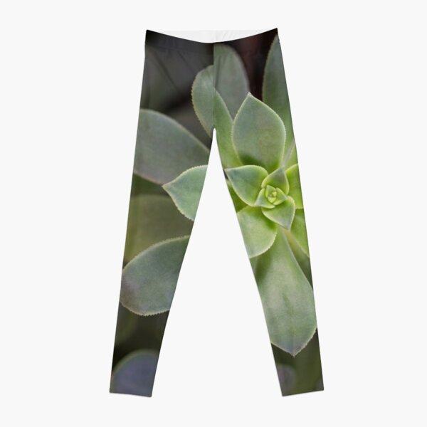 Zen Is Green Leggings