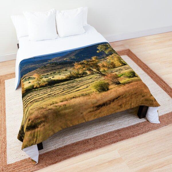 Ralph Lauren Ranch Comforter