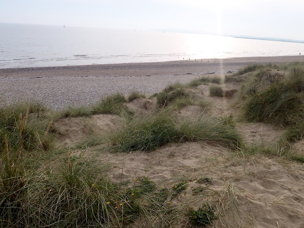 Camber Sands 12.0 by clarebearhh