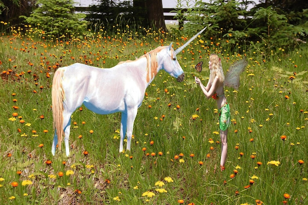 Faerie and Unicorn by imphavok