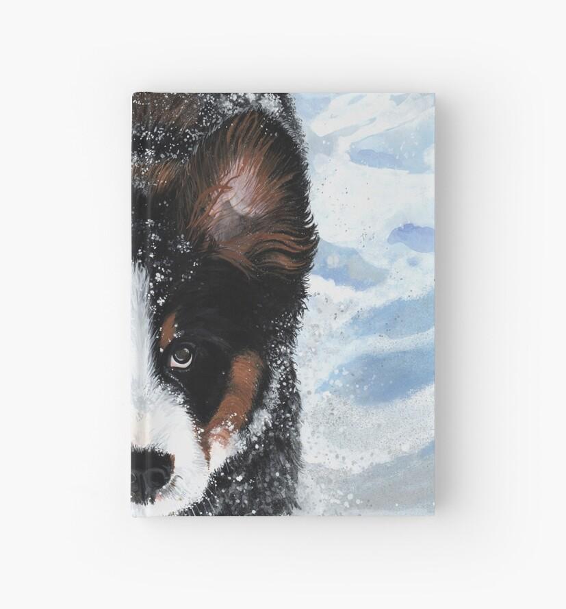 Snow Plow by Liane Weyers