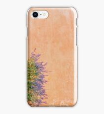 Sage and Adobe iPhone Case/Skin