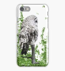 Barred Owl - Keeping an eye out- iPhone Case iPhone Case/Skin