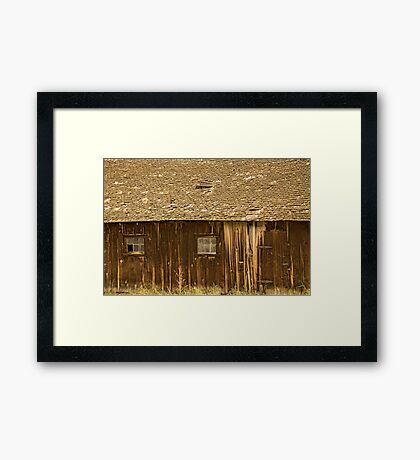 State Of Decay Framed Print