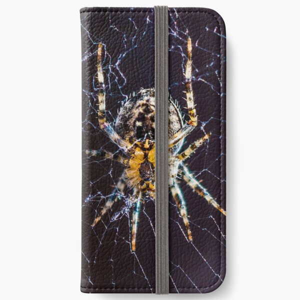 Spider, Insect and Bugs, Stunning Image iPhone Wallet