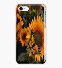 Sunflower Radiance Monarch Butterfly iPhone Case/Skin