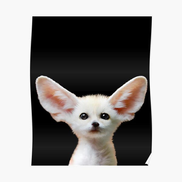 Fennec Fox _ The Endangered Poster