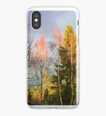Autumn Cathedral, iPhone case iPhone Case