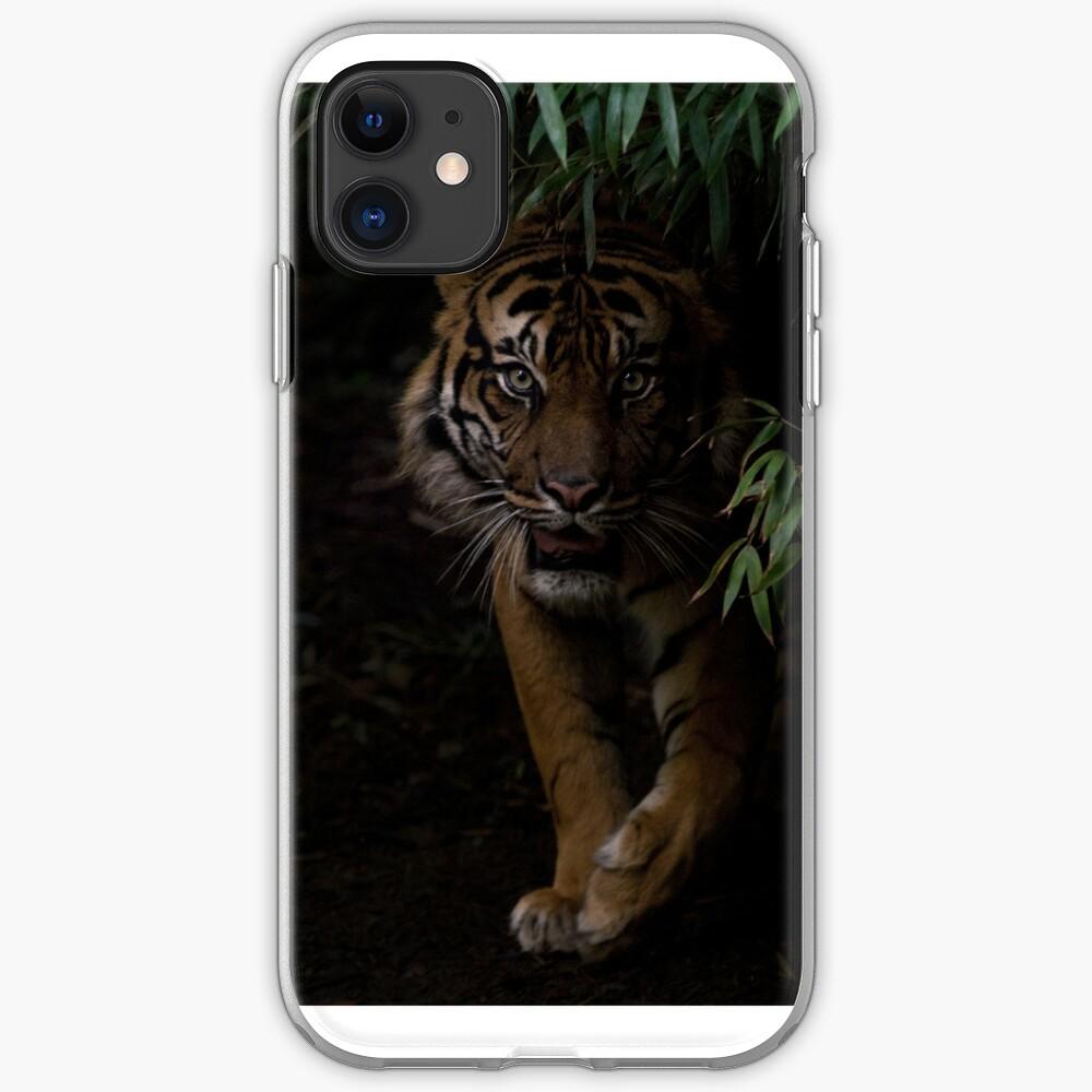 Sumatran Tiger iPhone Cover iPhone Case & Cover