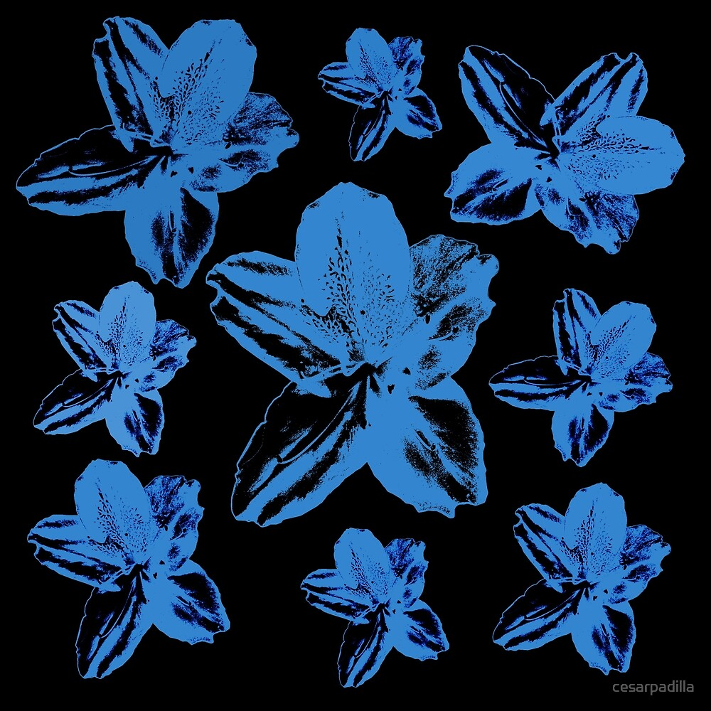 Blue tropical flowers on black floral texture. by cesarpadilla