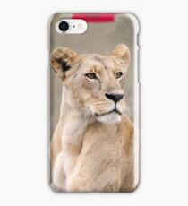 Lioness iPhone cover iPhone Case/Skin