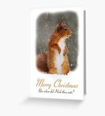 Squirrel Wildlife Christmas Card Greeting Card