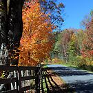 Bright Autumn Day by Linda Costello Hinchey