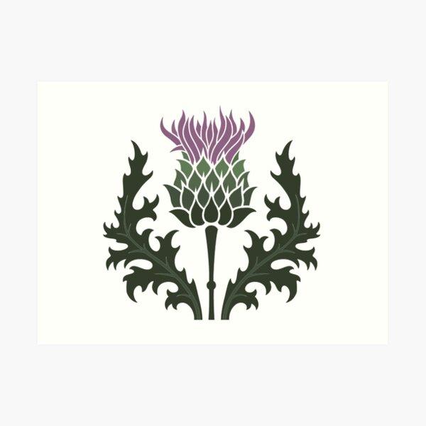 Scottish Thistle Flower of Scotland Art Print