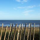 Beach Scene by mike201