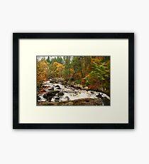River Brann,Dunkeld,Perthshire,Scotland Framed Print
