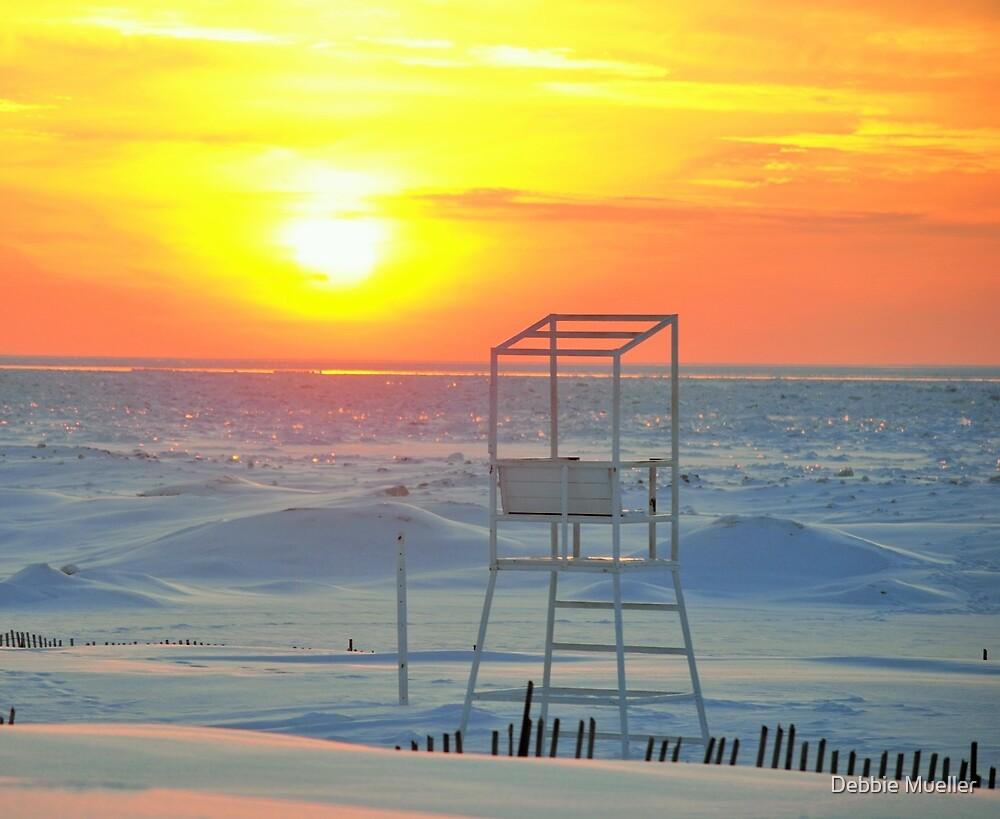 2014 Winter Sunset - 3 by Debbie Mueller