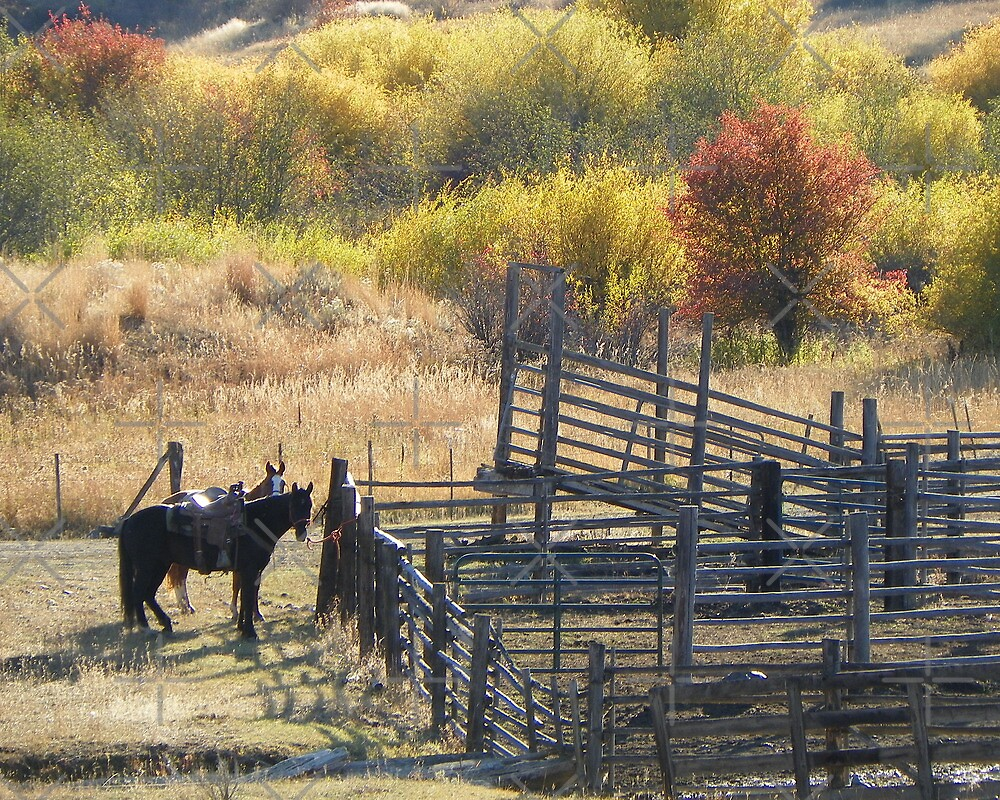 Corrals in Autumn by Betty  Town Duncan