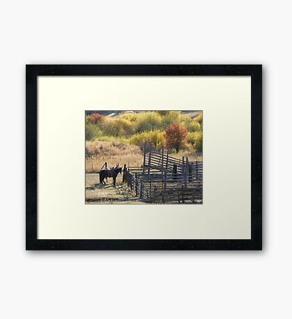 Corrals in Autumn Framed Print