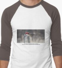 Crane Head Men's Baseball ¾ T-Shirt