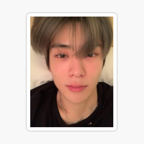 Jungwoo Selca Stickers Redbubble