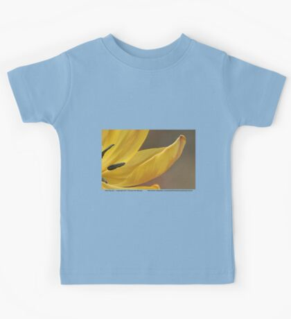 Alluring and... Kids Clothes