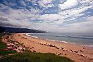 Shoalhaven Beach by Odille Esmonde-Morgan