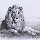 Resting Lion by thedrawinghands