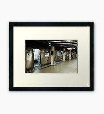 subvetica Framed Print
