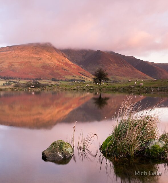 Tewet Tarn(day6) by Rich Gale