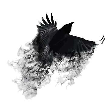 The Black Crow by 1212c8