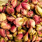 Rose Buds in a Bowl by PhotoLouis