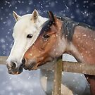 Two Ponies in the Snow by Ethiriel