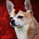 Chihuahua with Red Bow by Ethiriel