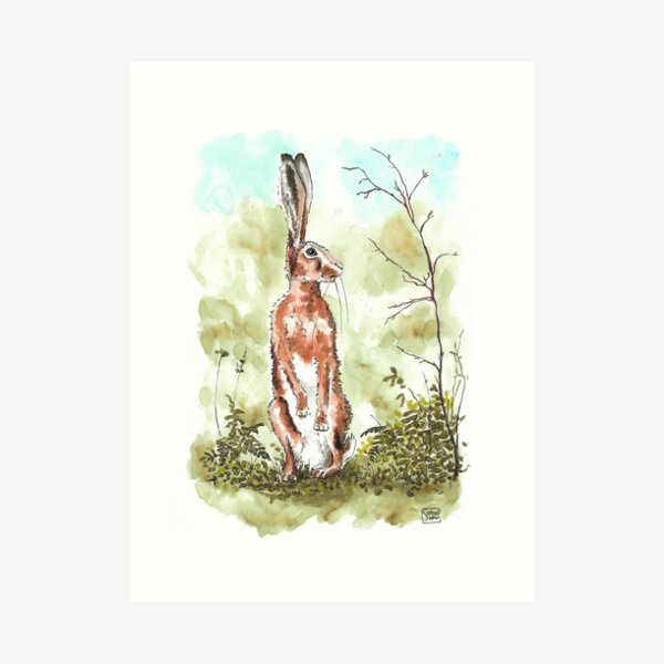Hare Searched Everywhere - Hare on hind legs watercolour Art Print