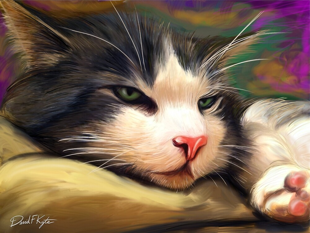 Tinker the Cat by davidkyte