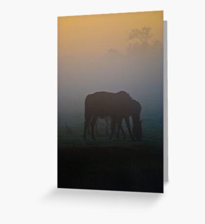 The Six-Legged Horse Greeting Card