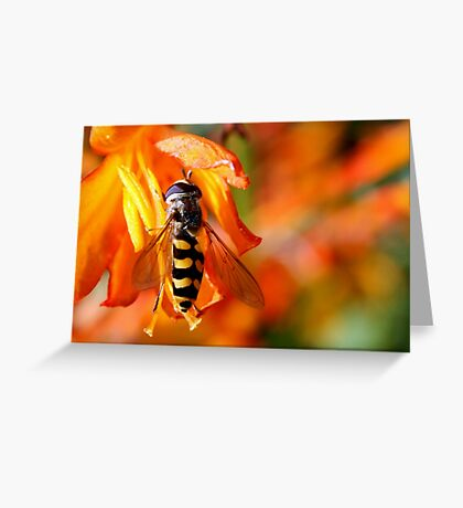 Hold tight! Greeting Card