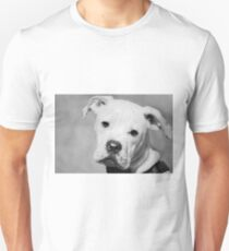 Can We Go For A Walk Now?  Unisex T-Shirt