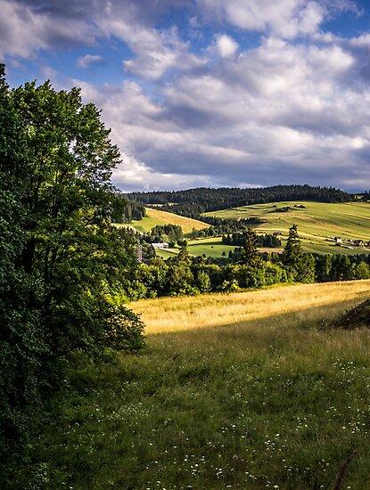 Summer Landscape by PatiDesigns