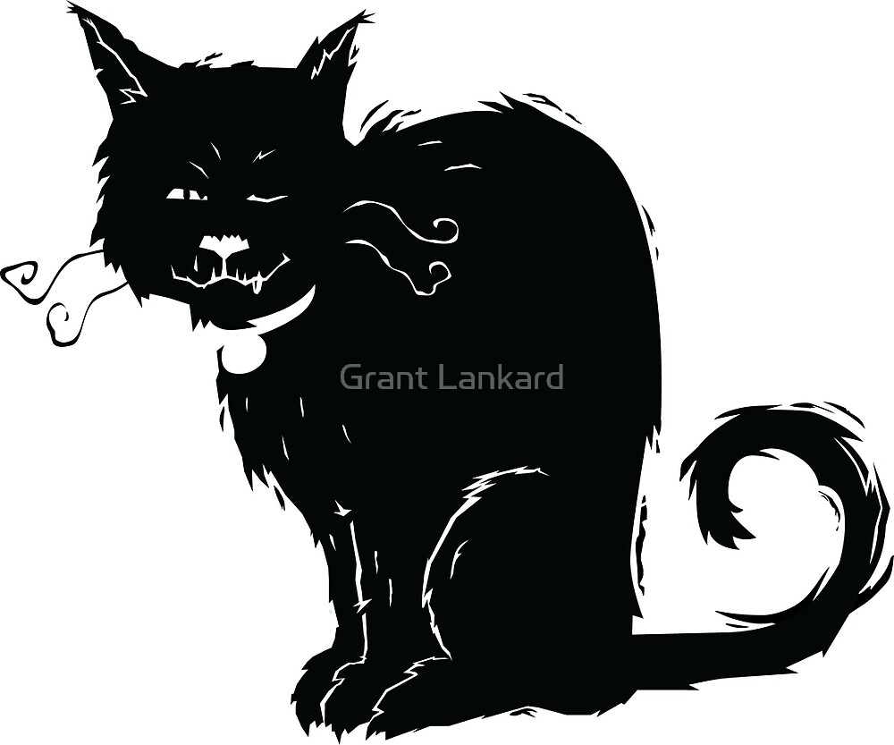 One-Eyed Cat by Grant Lankard