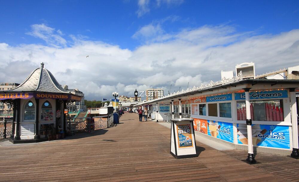 Palace Pier by zumi