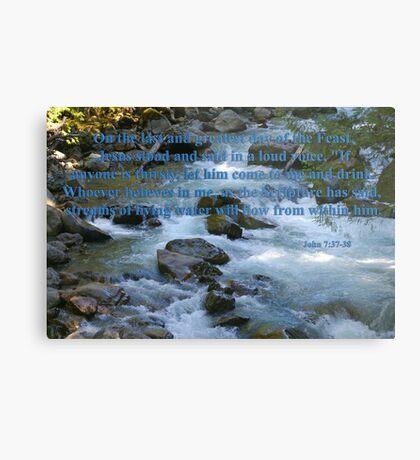 nooksack rapids with john 7:37-38 Metal Print